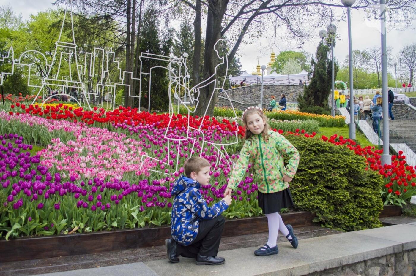 В Киеве открылась масштабная выставка тюльпанов, фото-10