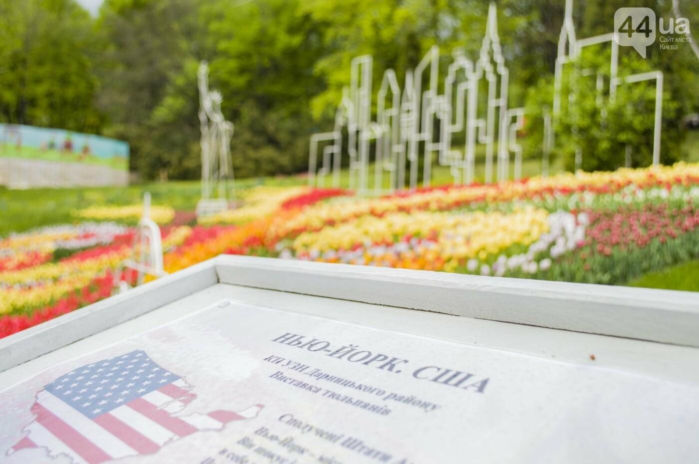 В Киеве открылась масштабная выставка тюльпанов, фото-18