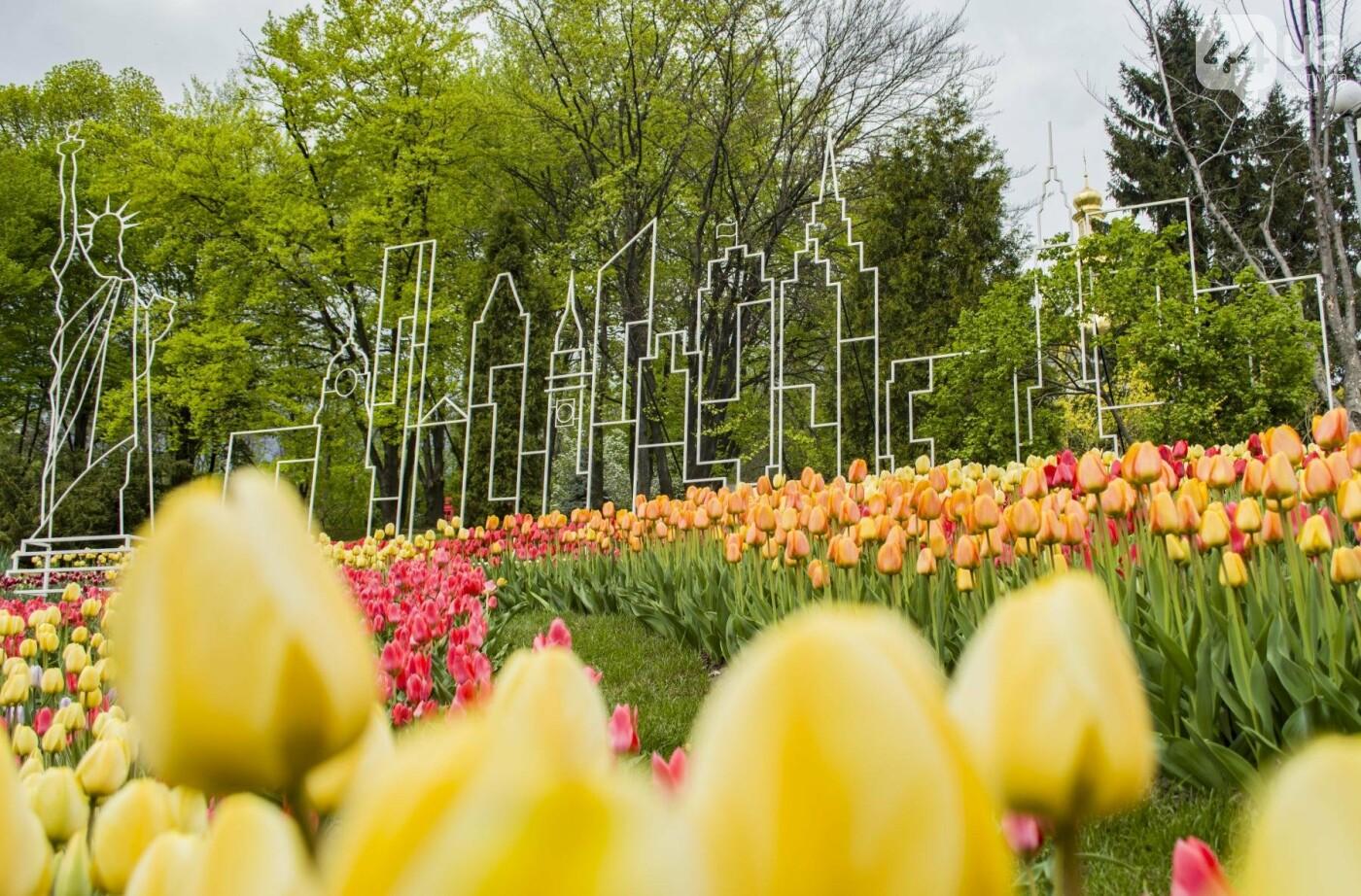 В Киеве открылась масштабная выставка тюльпанов, фото-20