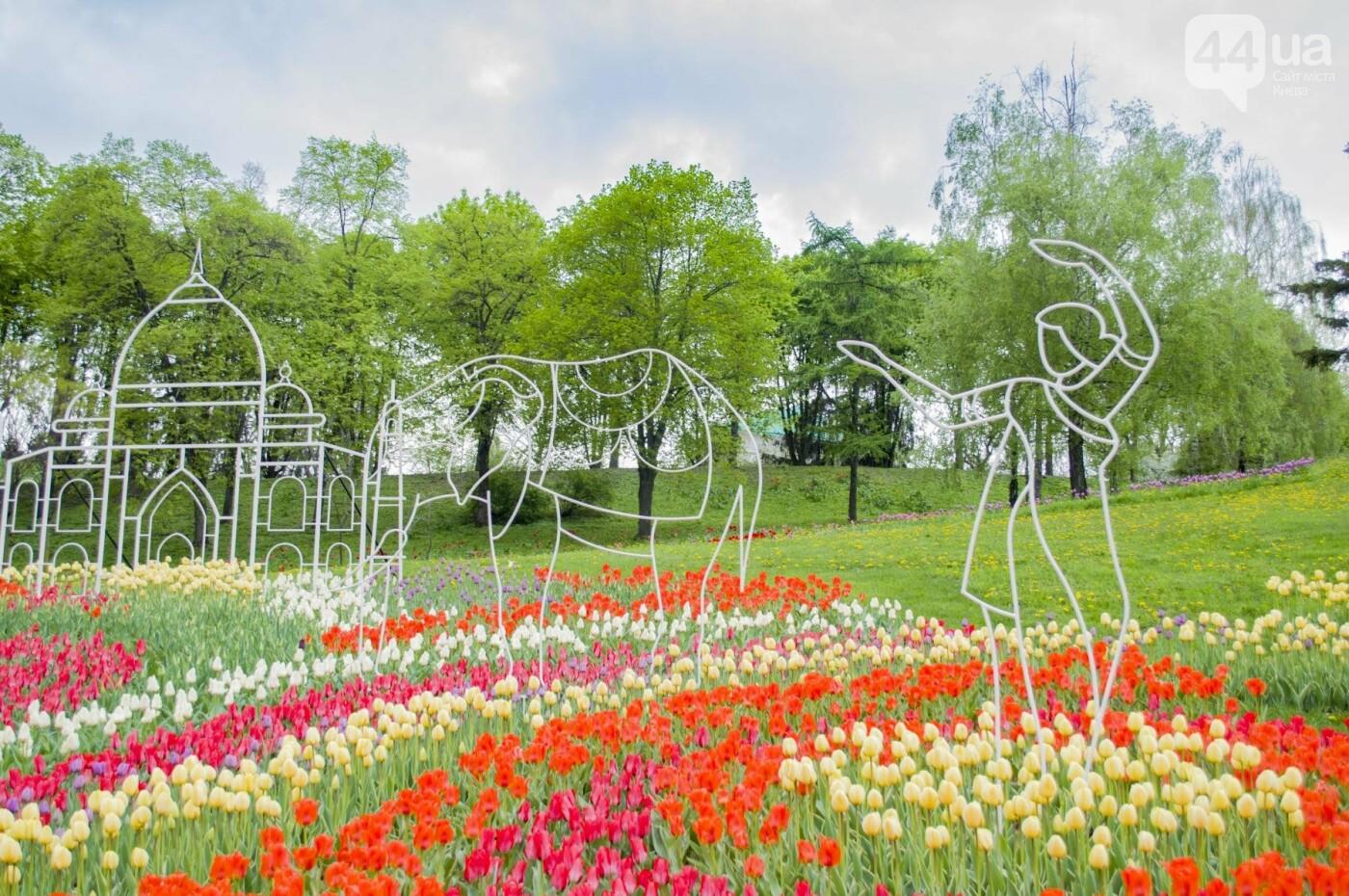 В Киеве открылась масштабная выставка тюльпанов, фото-2