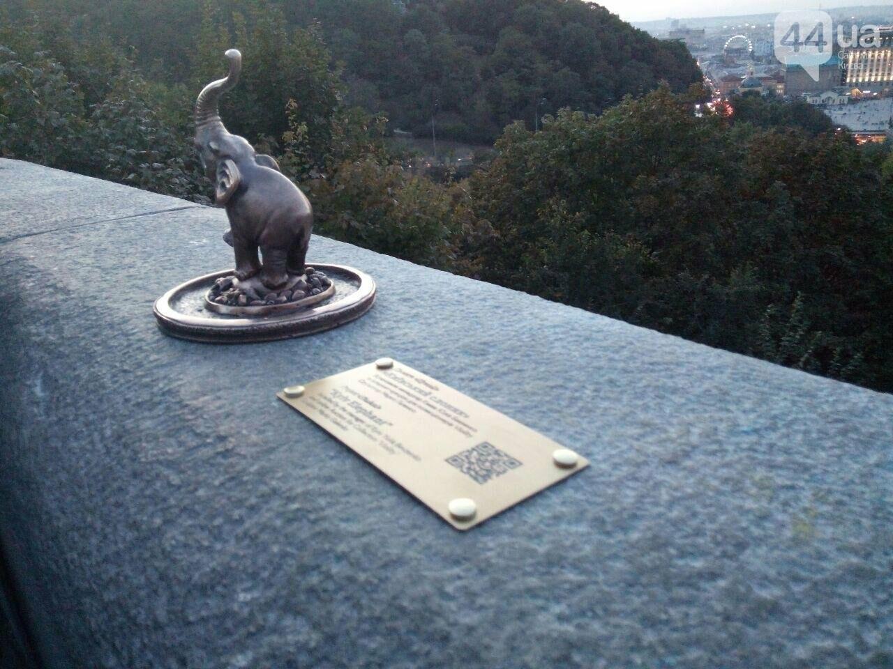 В центре Киева заметили маленького слоника, - ФОТО, фото-1