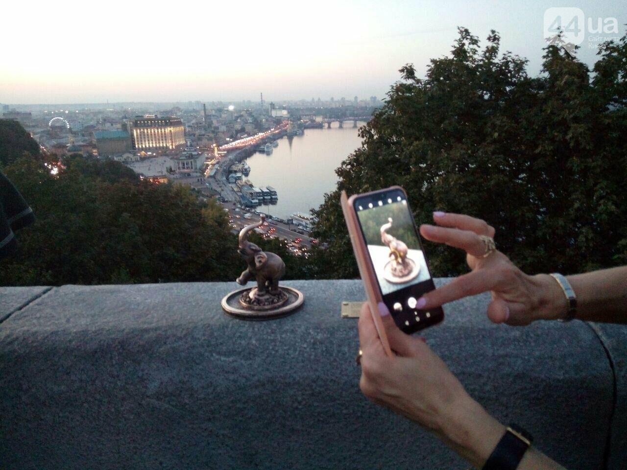 В центре Киева заметили маленького слоника, - ФОТО, фото-5
