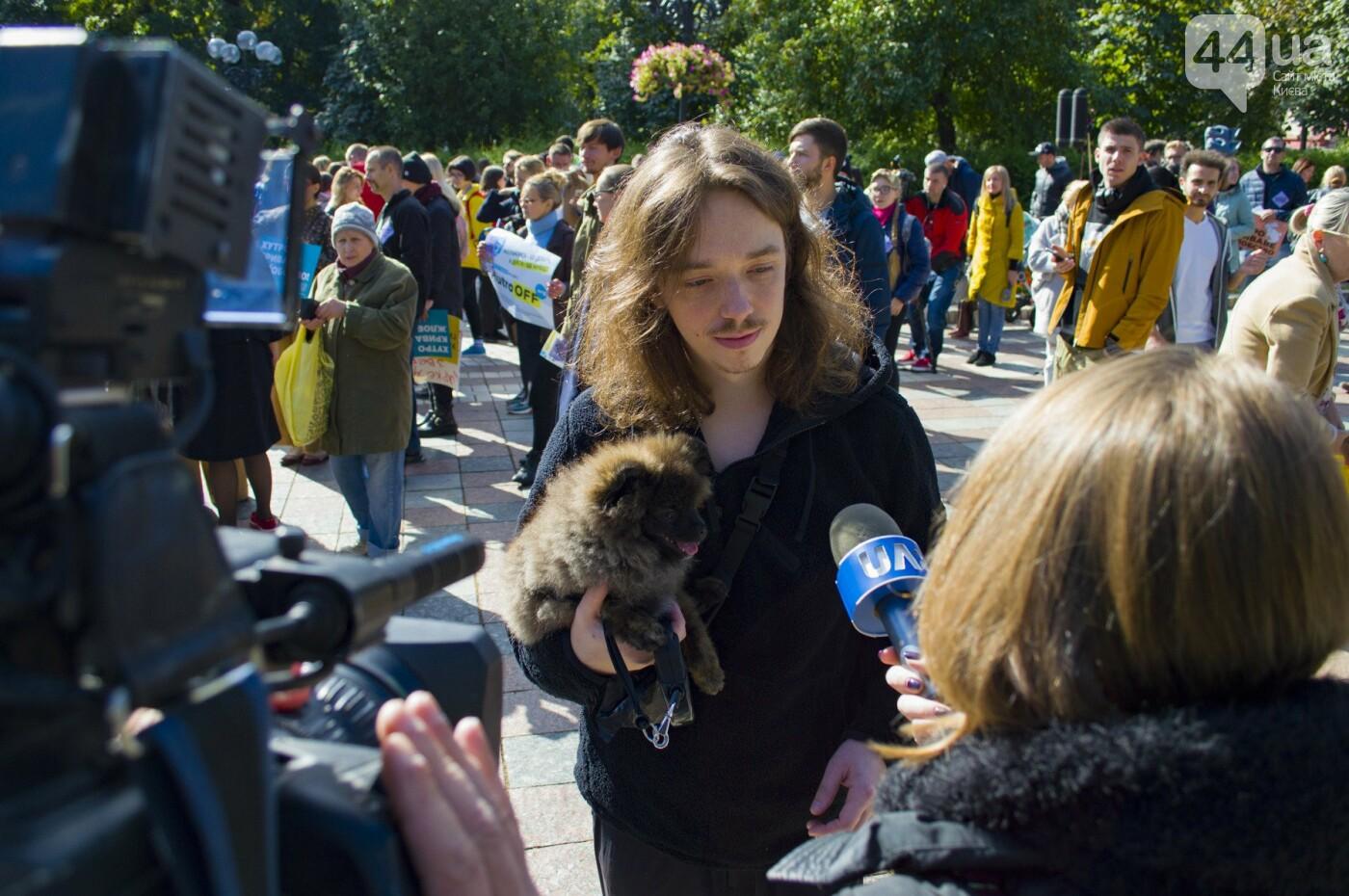 Собаки, коты и хомячки: в Киеве прошла акция за права животных, - ФОТОРЕПОРТАЖ, фото-16