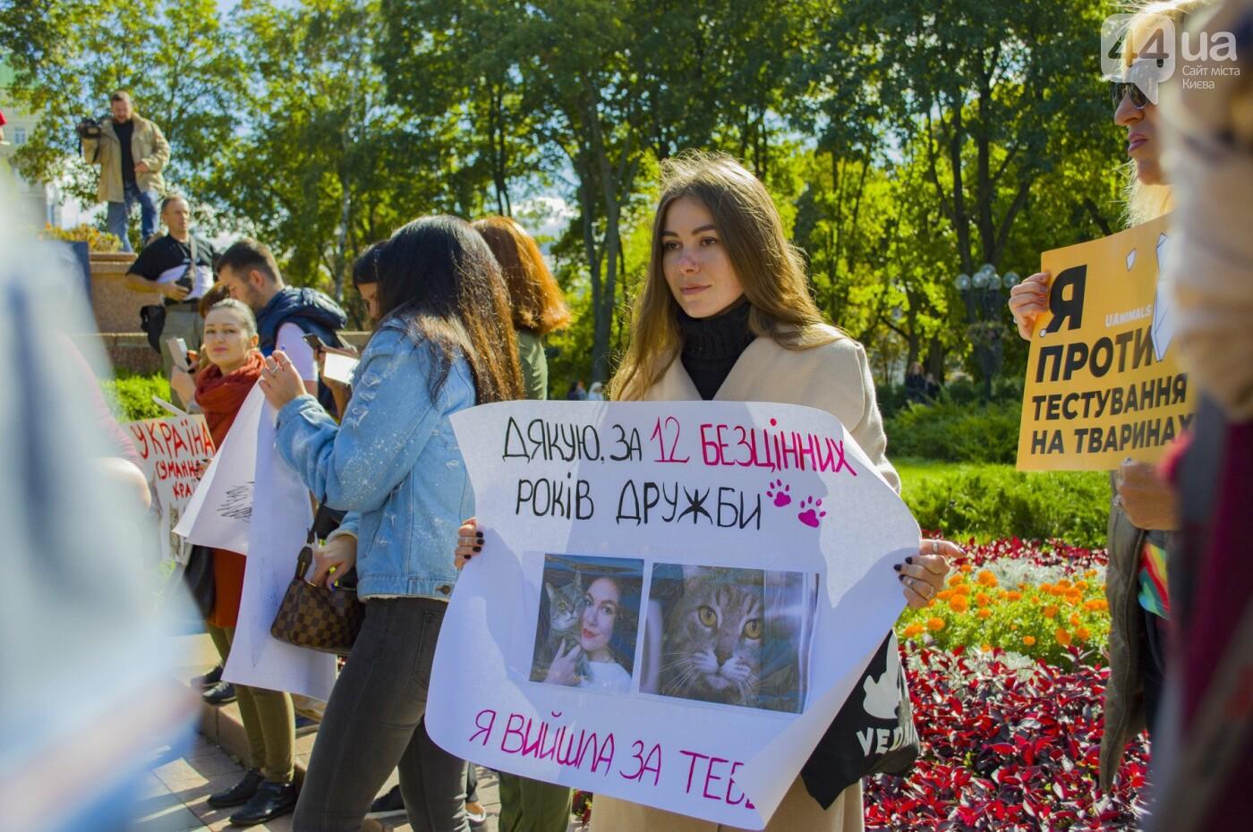 Собаки, коты и хомячки: в Киеве прошла акция за права животных, - ФОТОРЕПОРТАЖ, фото-10