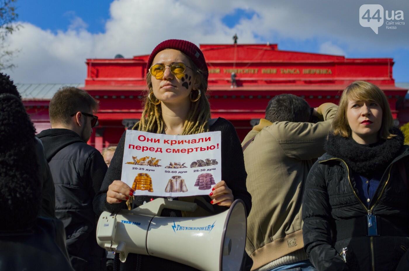 Собаки, коты и хомячки: в Киеве прошла акция за права животных, - ФОТОРЕПОРТАЖ, фото-23