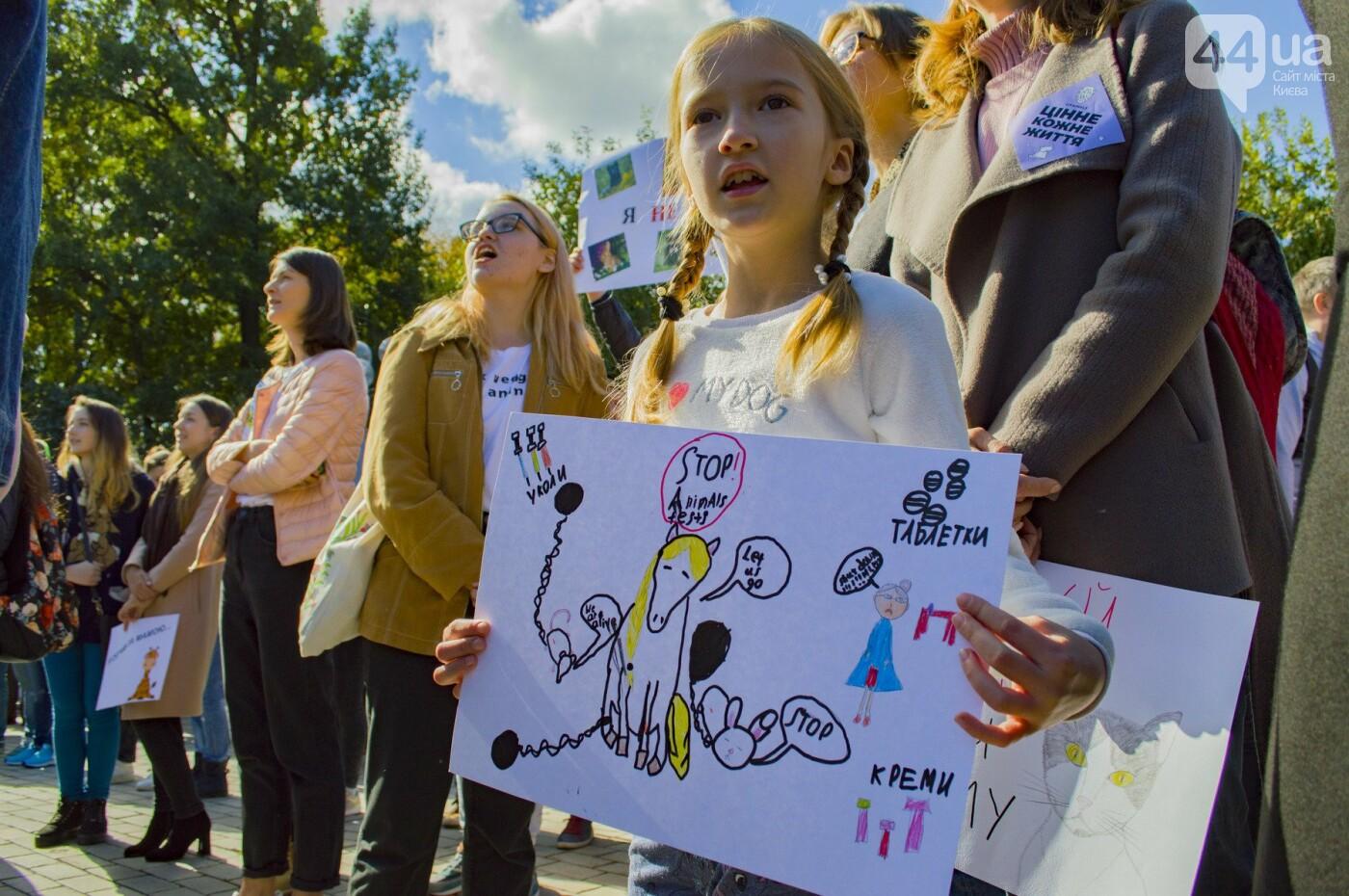 Собаки, коты и хомячки: в Киеве прошла акция за права животных, - ФОТОРЕПОРТАЖ, фото-27