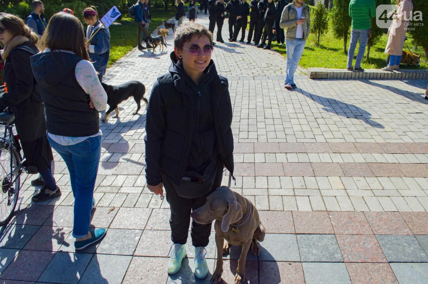 Собаки, коты и хомячки: в Киеве прошла акция за права животных, - ФОТОРЕПОРТАЖ, фото-28