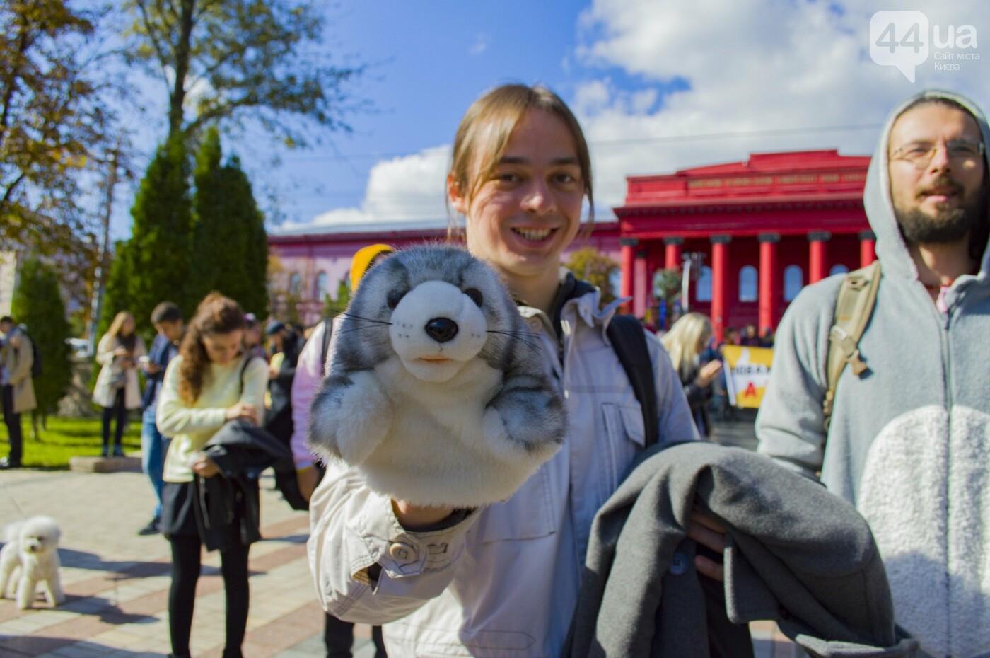 Собаки, коты и хомячки: в Киеве прошла акция за права животных, - ФОТОРЕПОРТАЖ, фото-34