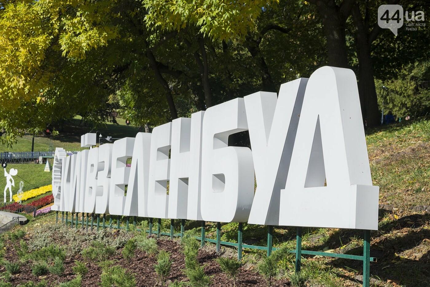 С музыкой и цветами: в Киеве стартовал красочный фестиваль хризантем, - ФОТОРЕПОРТАЖ, фото-16