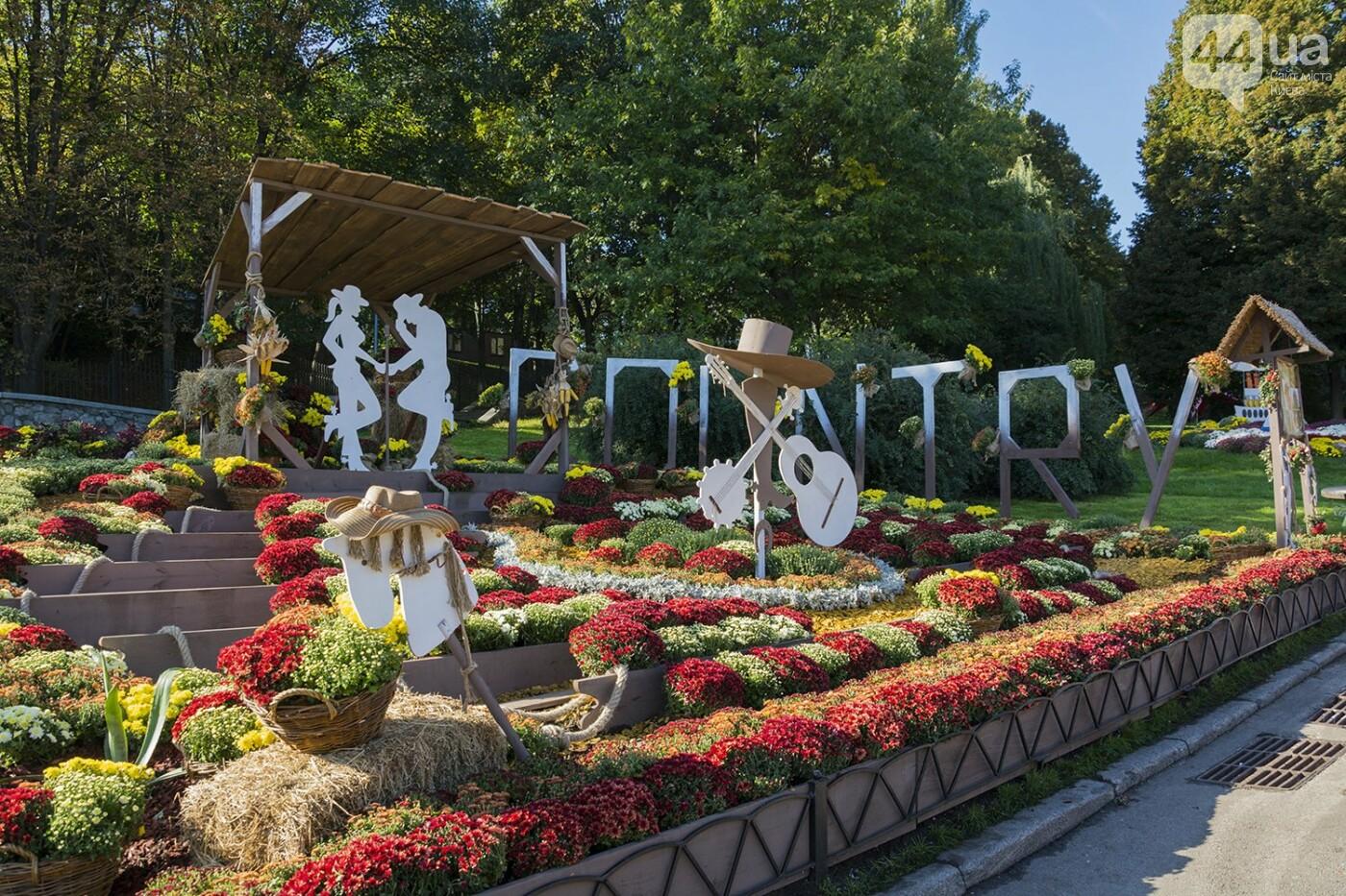 С музыкой и цветами: в Киеве стартовал красочный фестиваль хризантем, - ФОТОРЕПОРТАЖ, фото-5