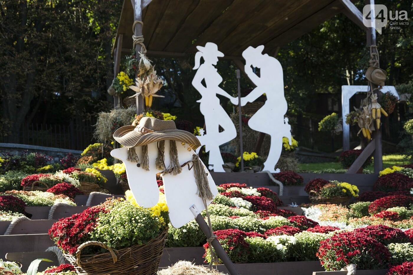 С музыкой и цветами: в Киеве стартовал красочный фестиваль хризантем, - ФОТОРЕПОРТАЖ, фото-3