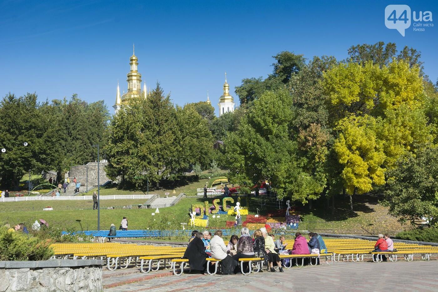 С музыкой и цветами: в Киеве стартовал красочный фестиваль хризантем, - ФОТОРЕПОРТАЖ, фото-1