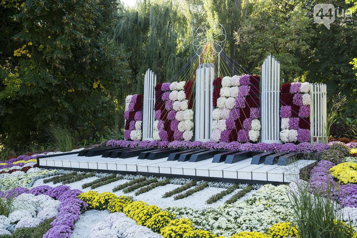 С музыкой и цветами: в Киеве стартовал красочный фестиваль хризантем, - ФОТОРЕПОРТАЖ, фото-6