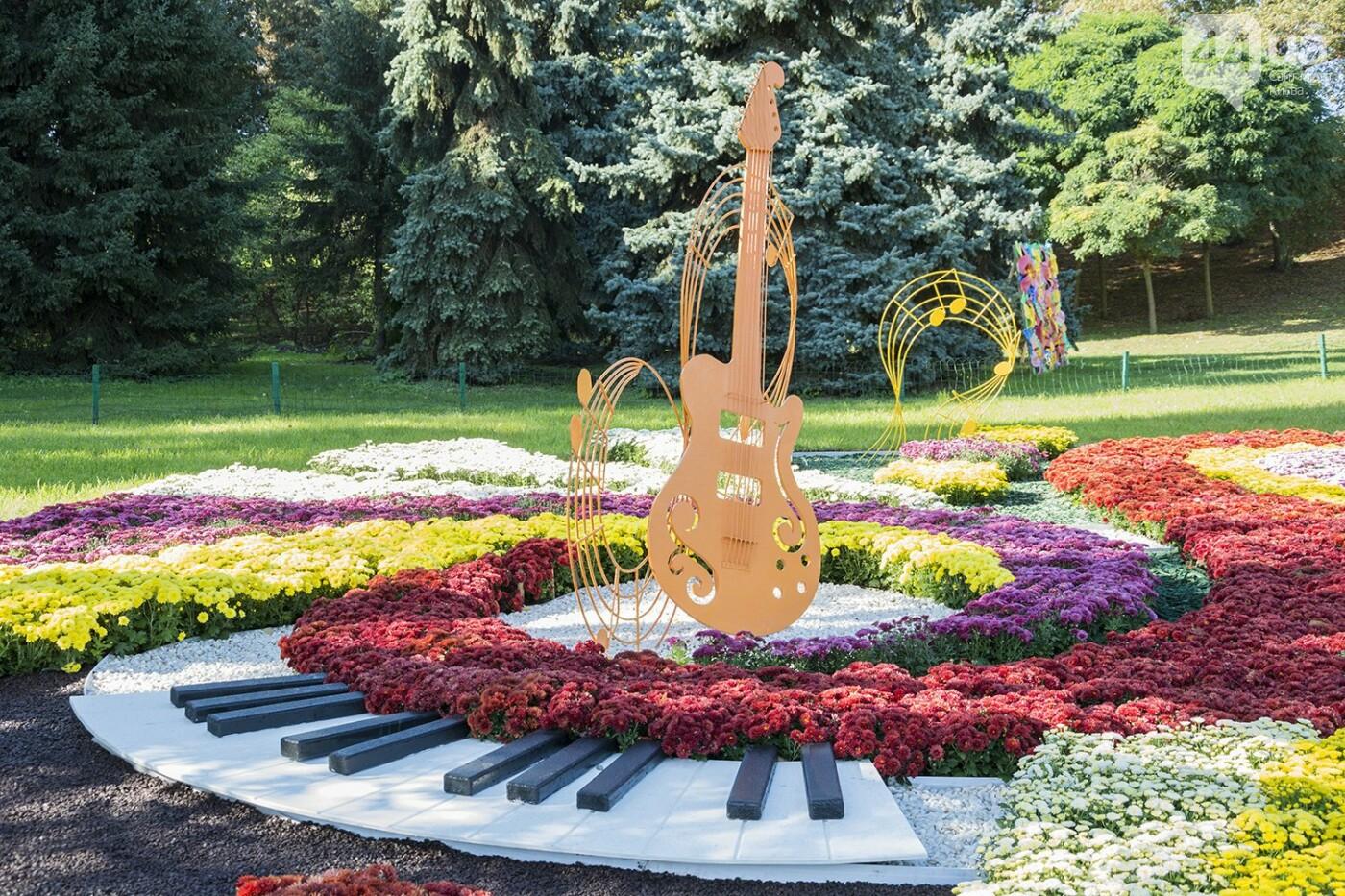 С музыкой и цветами: в Киеве стартовал красочный фестиваль хризантем, - ФОТОРЕПОРТАЖ, фото-7