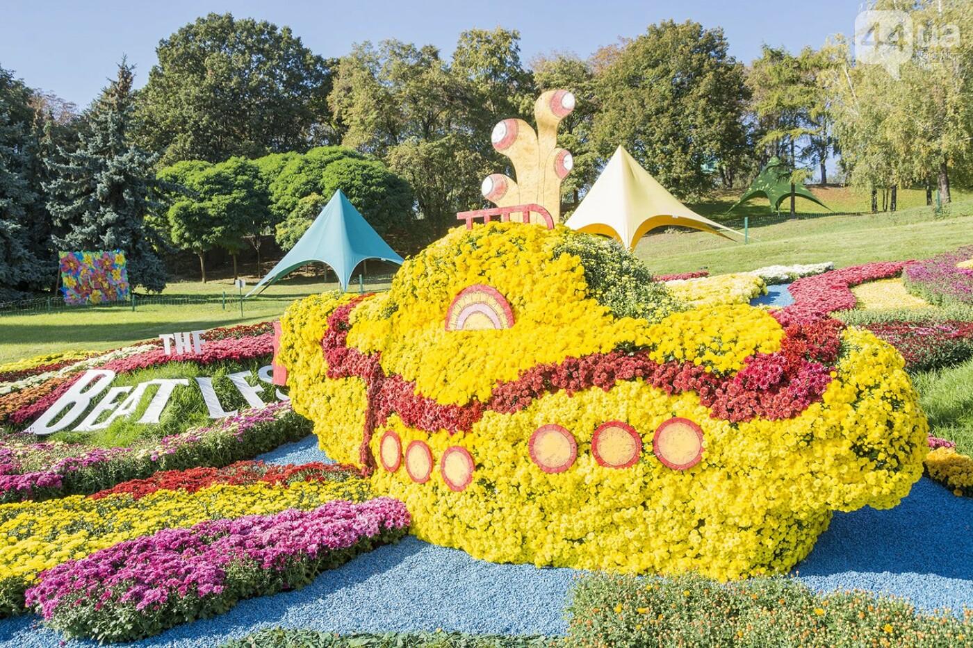 С музыкой и цветами: в Киеве стартовал красочный фестиваль хризантем, - ФОТОРЕПОРТАЖ, фото-8