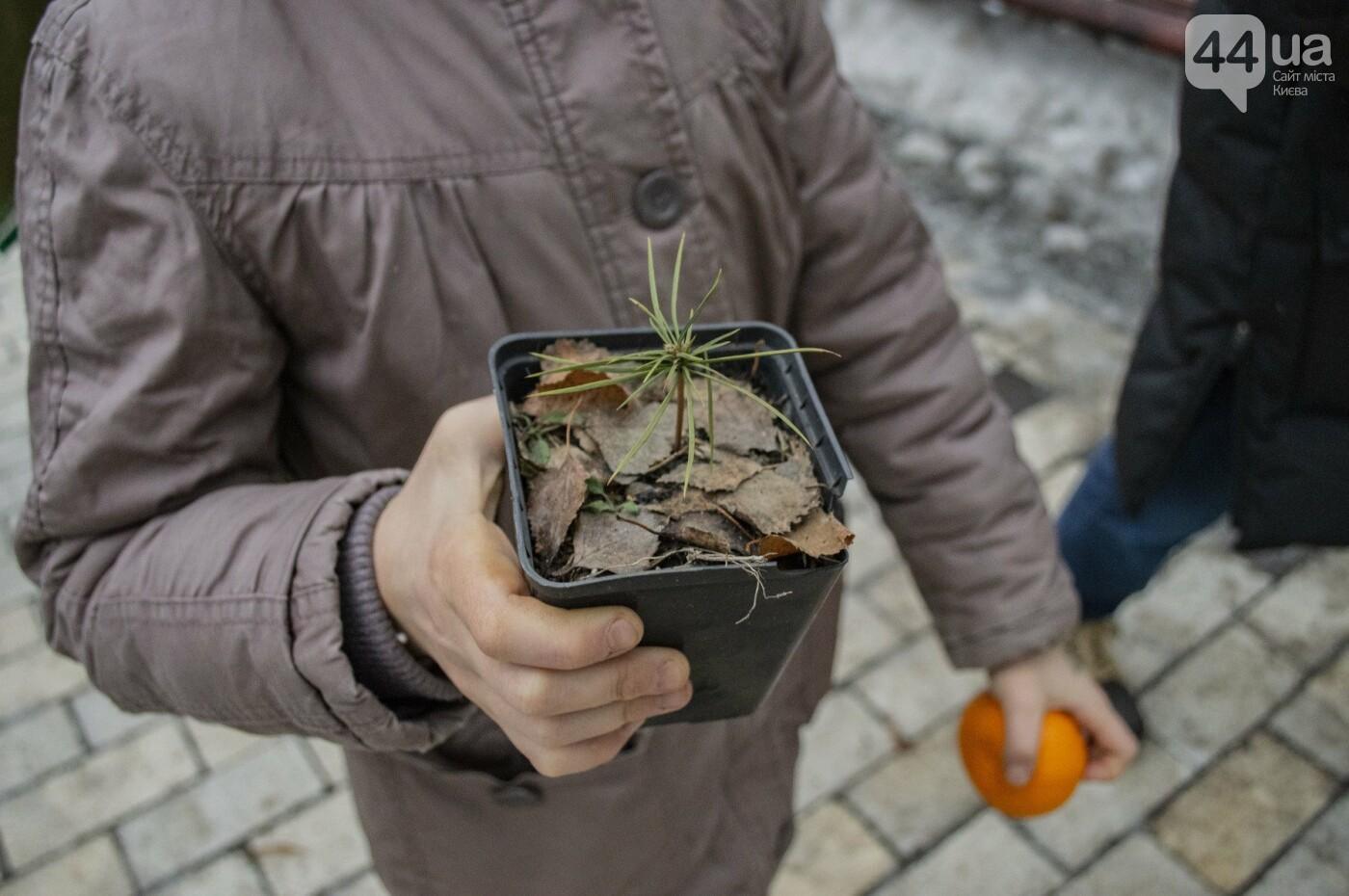 По Киеву прошли зеленые Деды Морозы и Снегурочки, - ФОТОРЕПОРТАЖ, фото-22