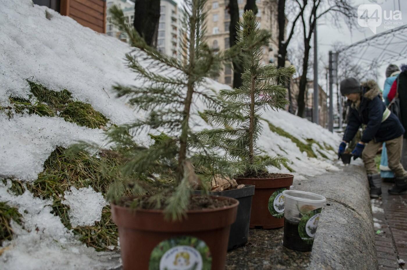 По Киеву прошли зеленые Деды Морозы и Снегурочки, - ФОТОРЕПОРТАЖ, фото-4