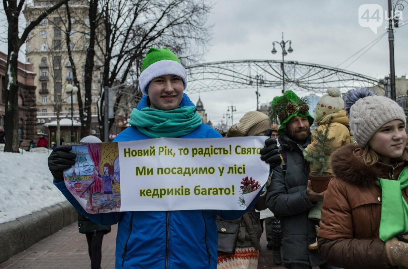 По Киеву прошли зеленые Деды Морозы и Снегурочки, - ФОТОРЕПОРТАЖ, фото-6