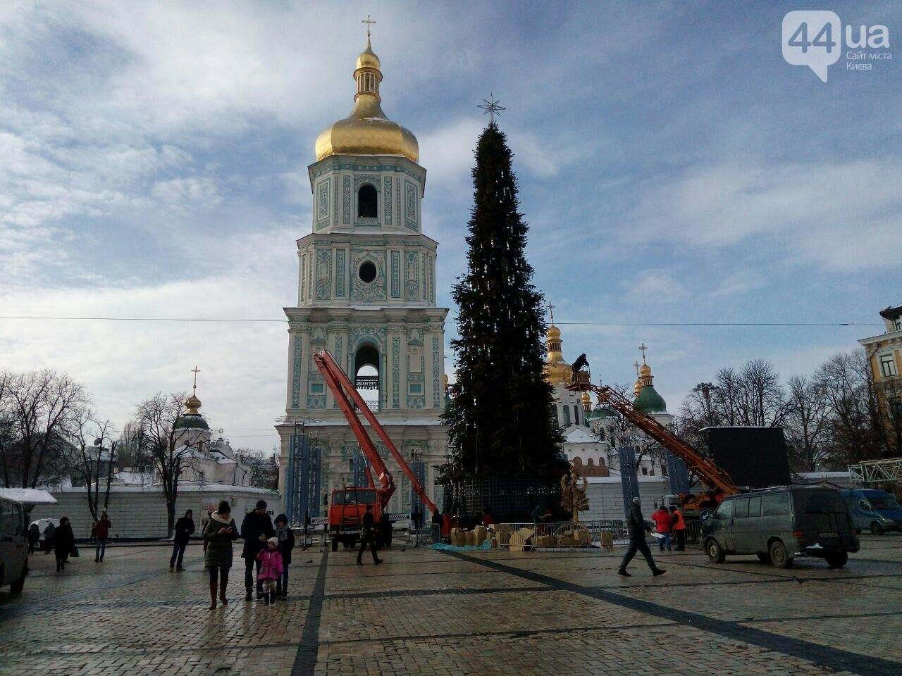 На Софийской площади начали разбирать главную елку страны, - ФОТО, фото-2