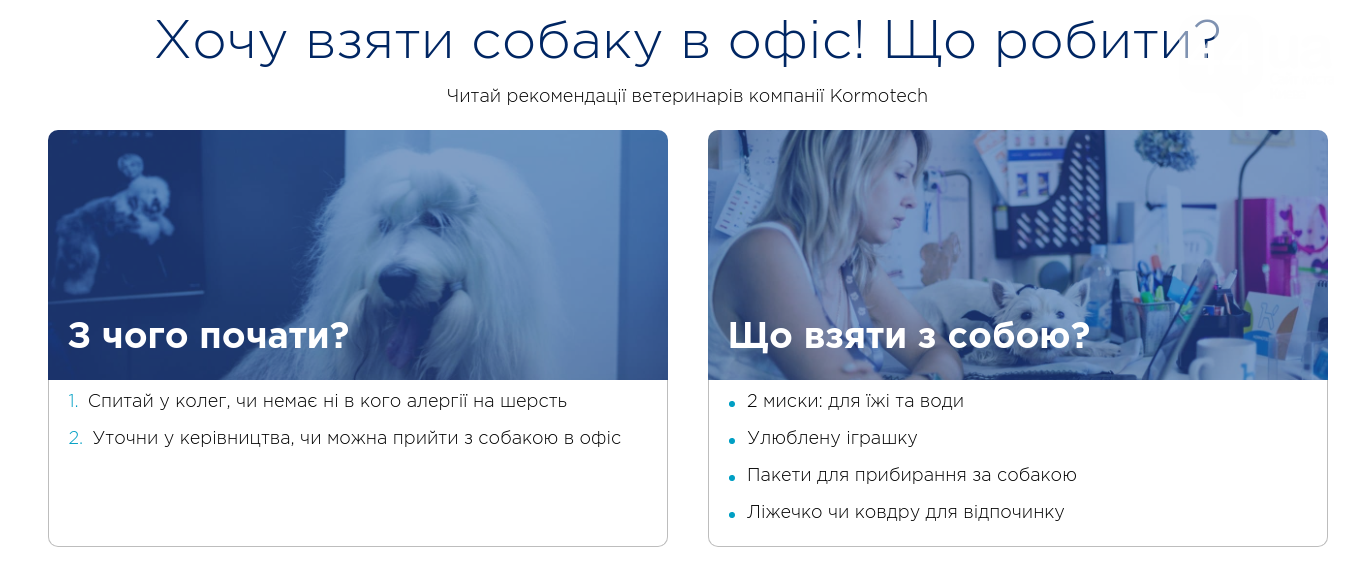 Киевлянам предложили массово прийти на работу со своими собаками, фото-2