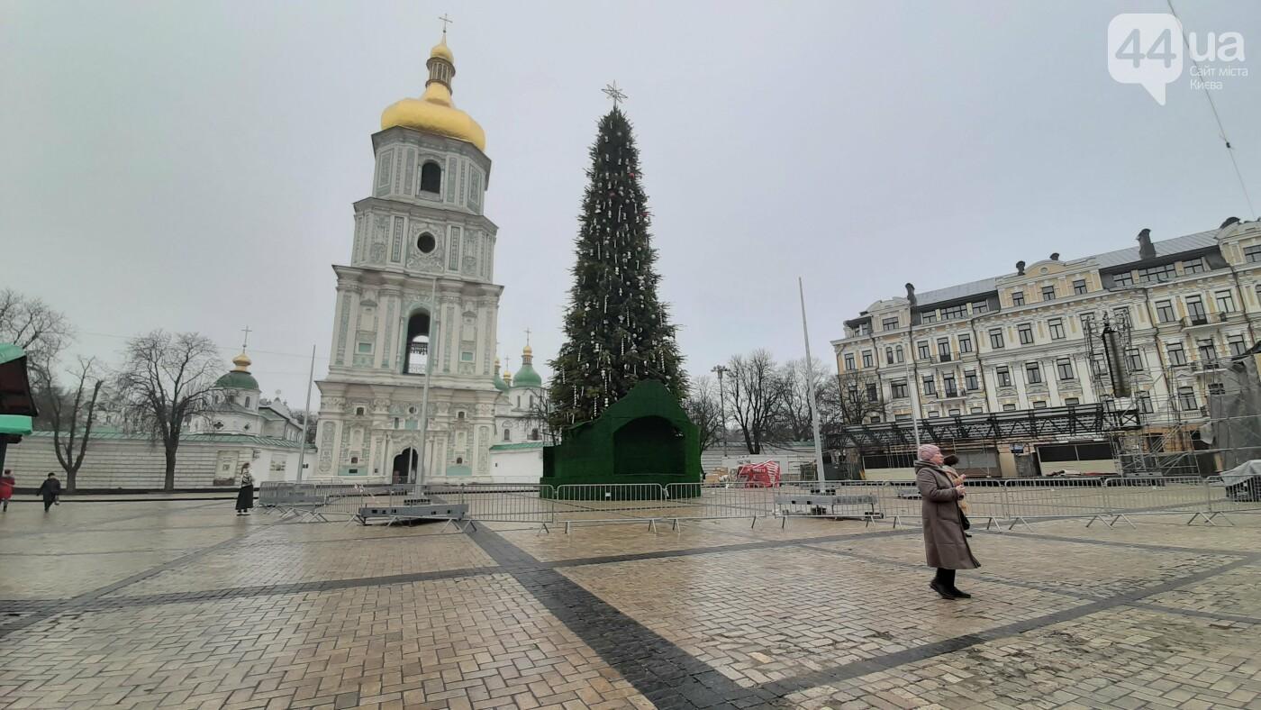 В центре Киева установили 30-метровую новогоднюю елку: как она выглядит, - ФОТО, фото-1