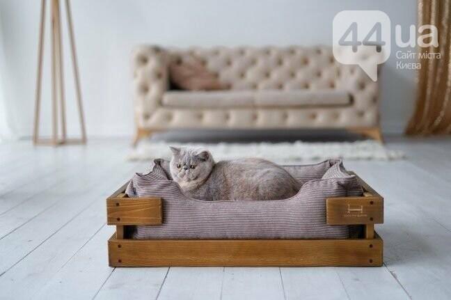 Лежанка для кота: как выбрать лучшую кроватку для пушистого друга, фото-1
