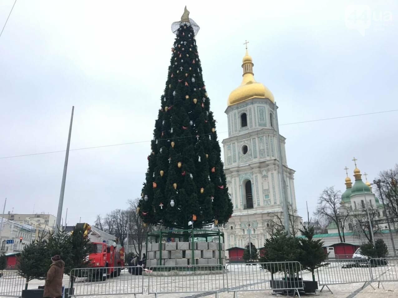 Уже со шляпой: как в Киеве наряжают главную ёлку на Софийской площади, ФОТО, фото-2