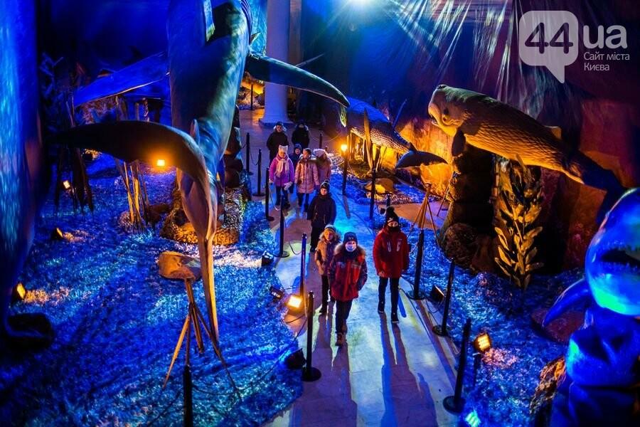«Зимова країна на ВДНГ»: гид по праздничным развлечениям и локациям, фото-16