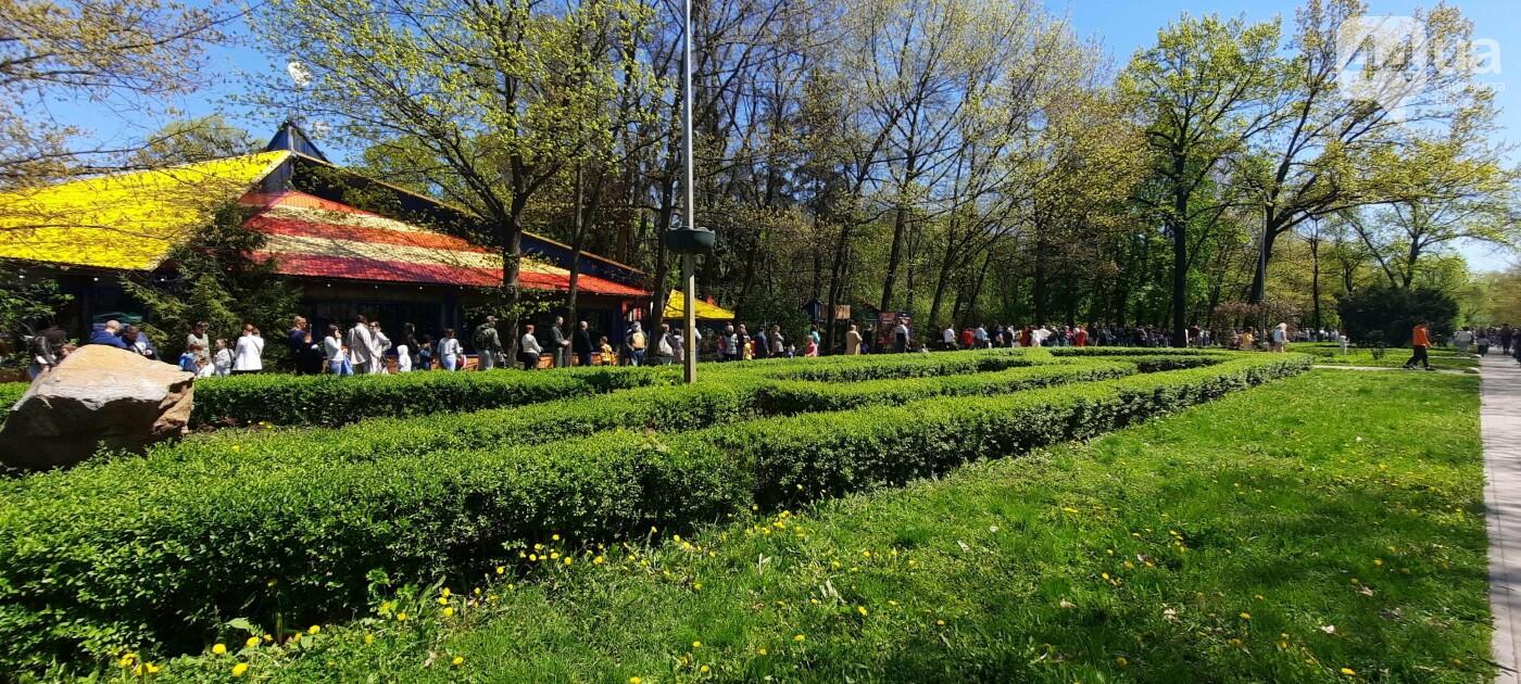 В парк динозавров в Киеве выстроилась огромнейшая очередь., Фото 44.ua