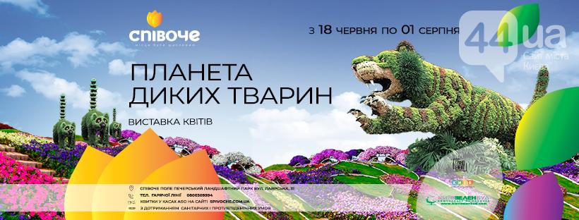 Дикі тварини у центрі Києва: в столичному парку стартує літня виставка квітів, фото-2