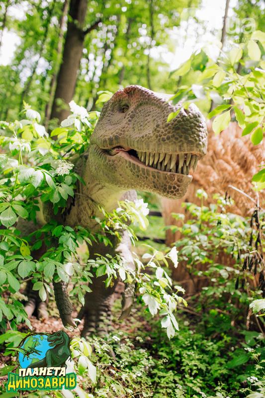 Грозные хищники и гигантские травоядные. Кого можно встретить в «Планете динозавров» на ВДНГ, фото-12