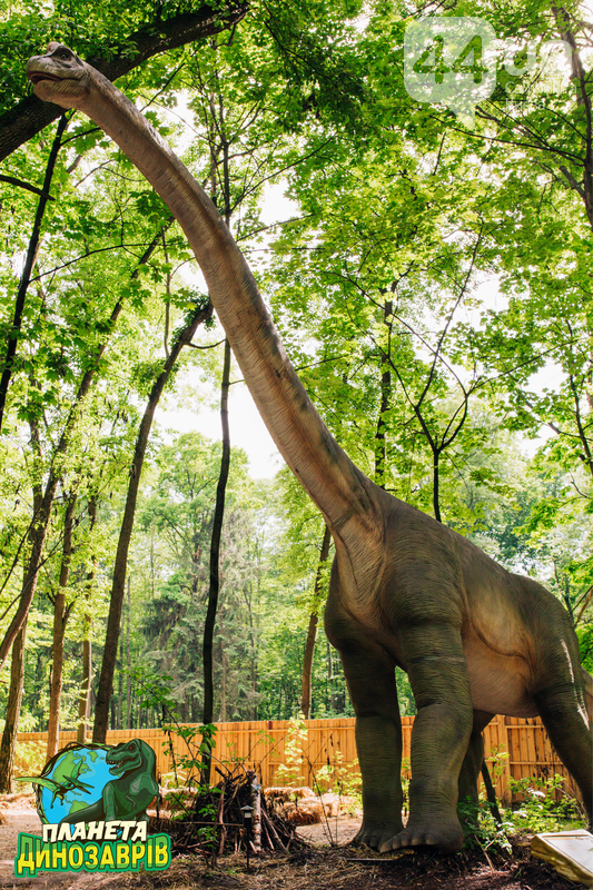 Грозные хищники и гигантские травоядные. Кого можно встретить в «Планете динозавров» на ВДНГ, фото-2
