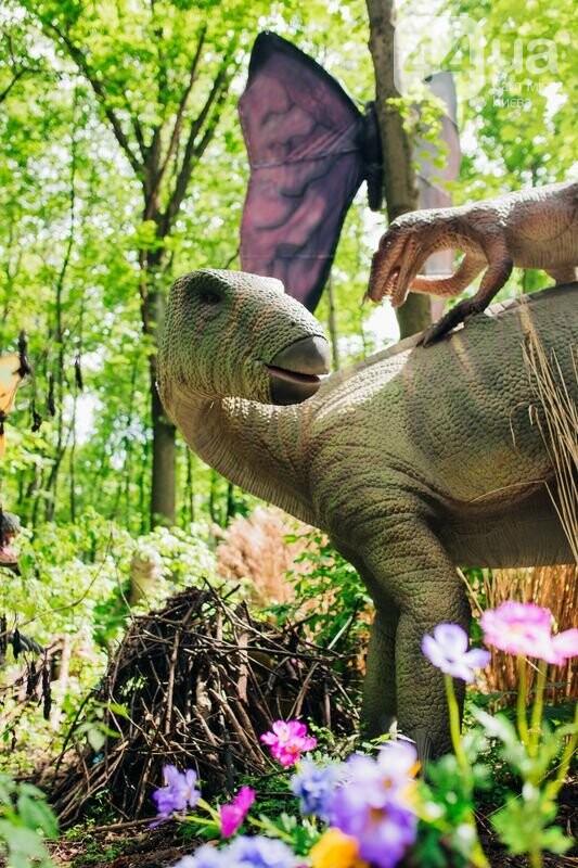 Грозные хищники и гигантские травоядные. Кого можно встретить в «Планете динозавров» на ВДНГ, фото-5