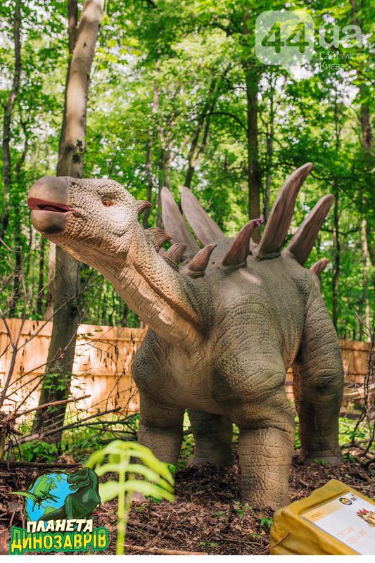 Грозные хищники и гигантские травоядные. Кого можно встретить в «Планете динозавров» на ВДНГ, фото-11