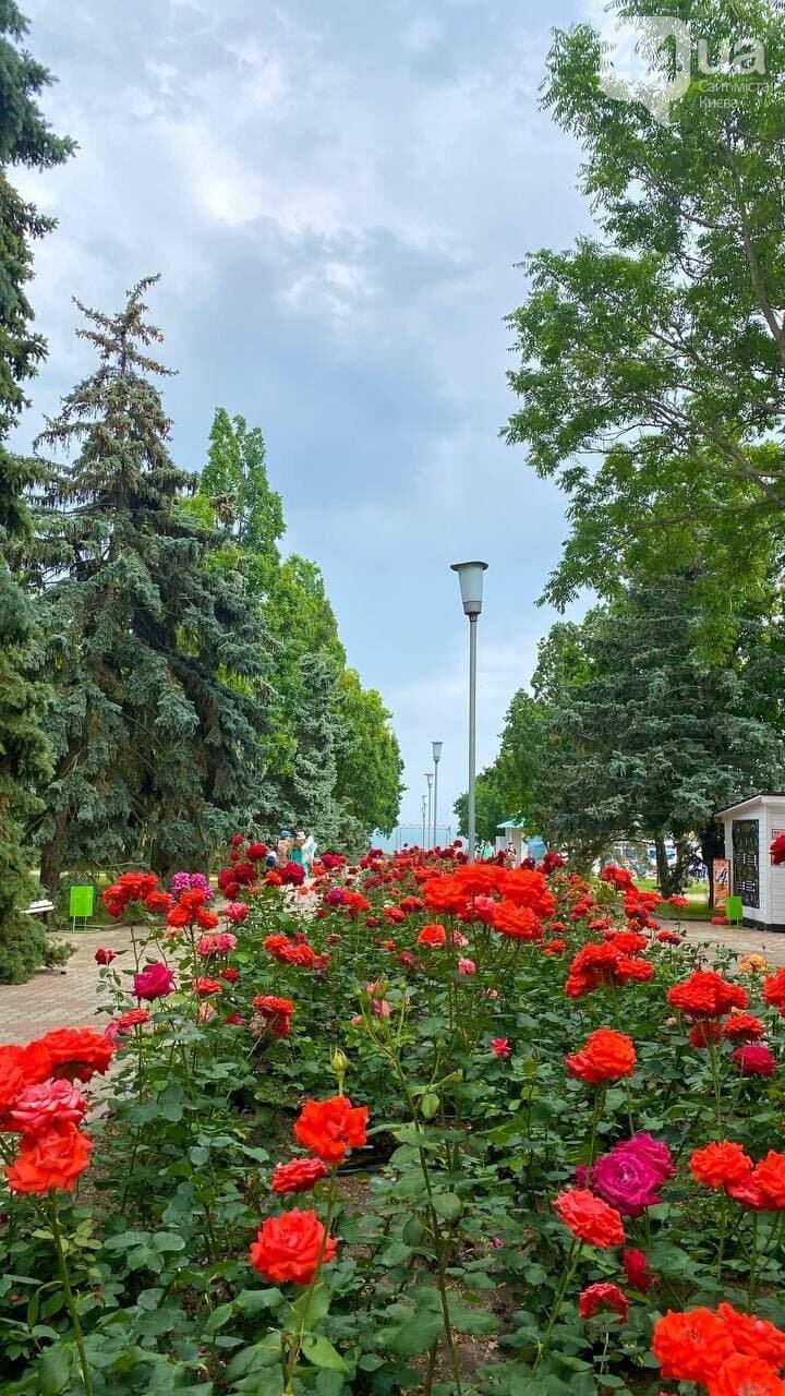 Настоящий летний отдых на Азовском море в пансионате «Дорожник», фото-8