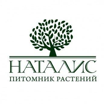 Логотип - Сеть садовых центров и питомник декоративных растений «Наталис»