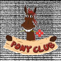 Pony Club, верховая езда, обучение, прогулки на лошадях