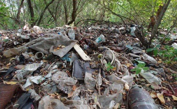 Киев призывает Верховную Раду увеличить штрафы за стихийный выброс мусора