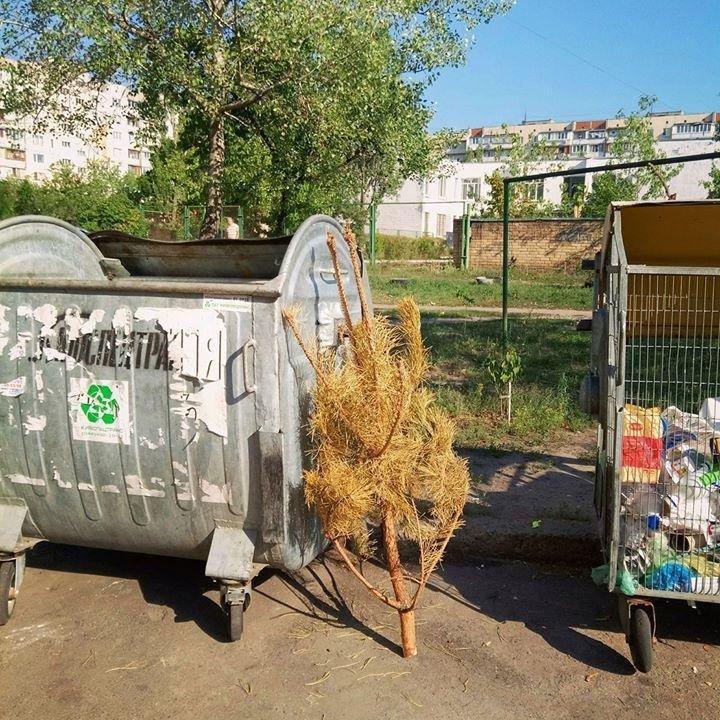 Держался до последнего: житель Оболони выбросил новогоднюю елку, фото-1, Фото: Оболонь / Facebook