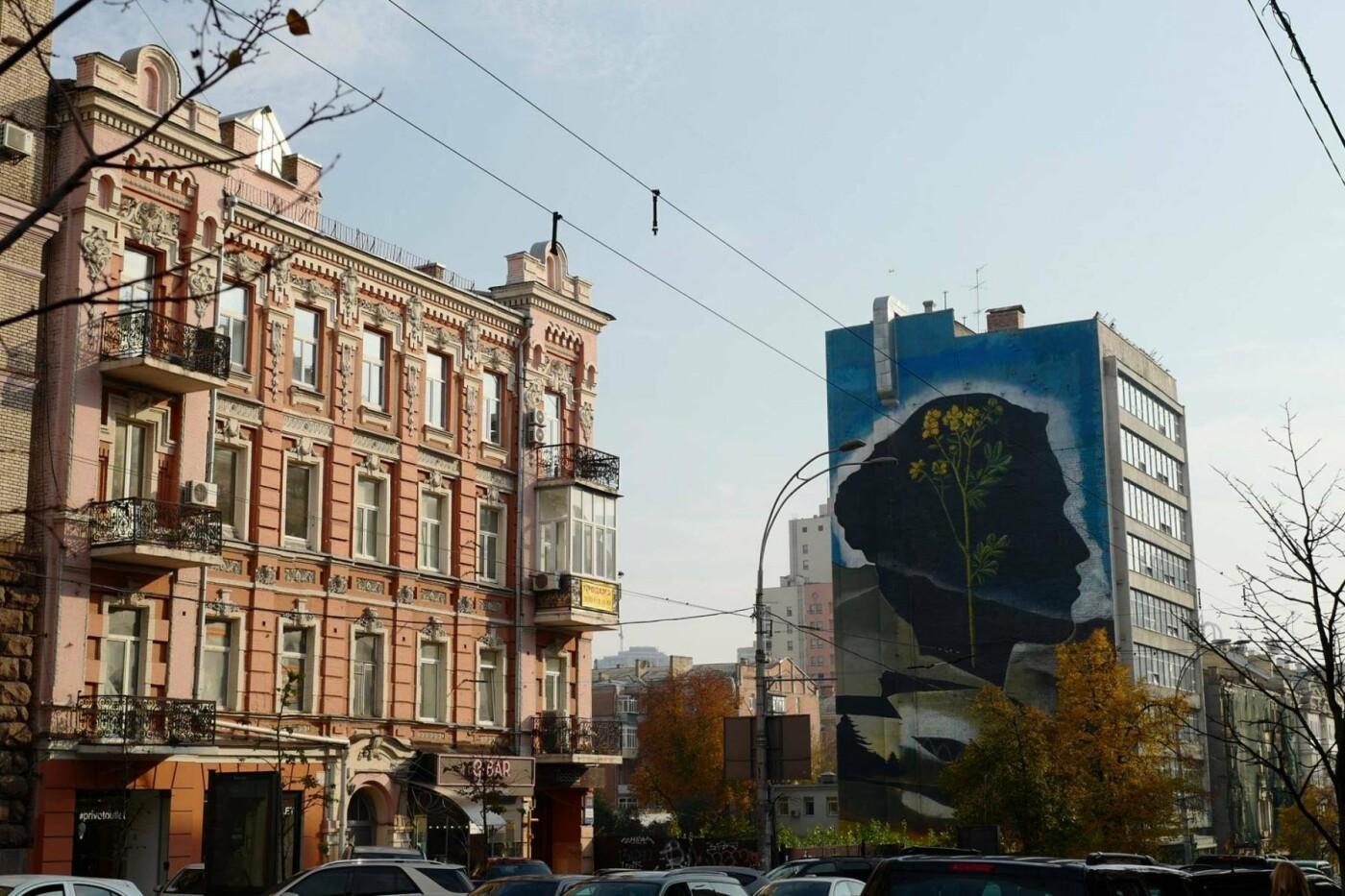 В Киеве появился новый мурал, фото-1