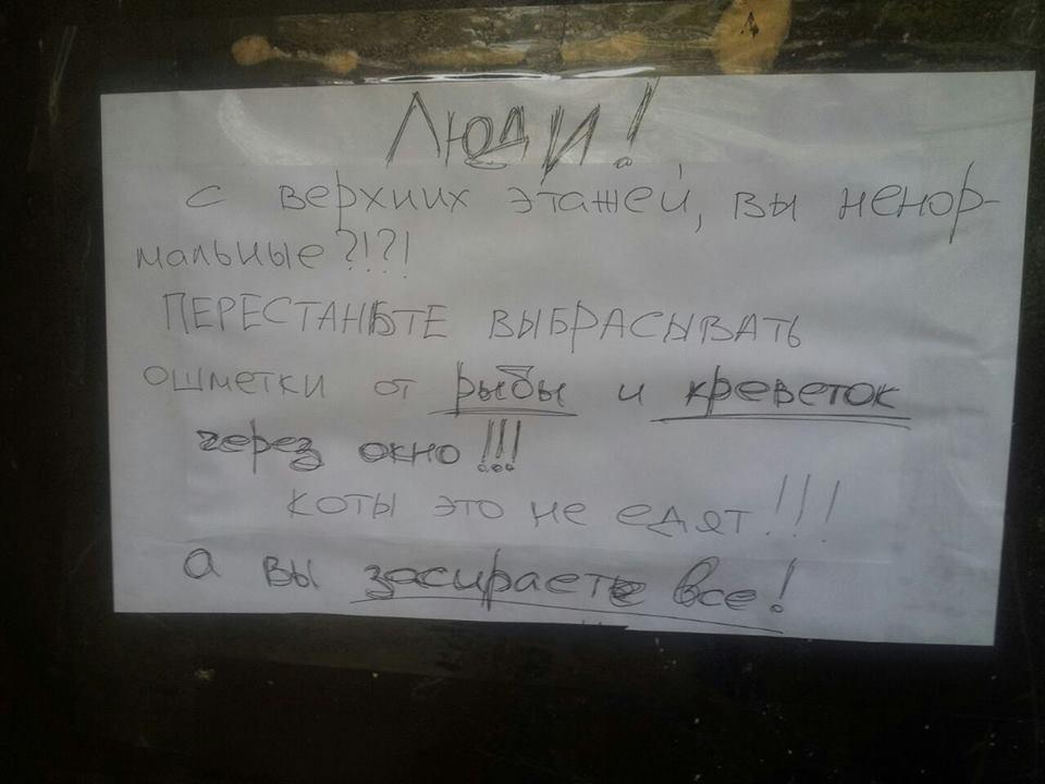 Киевляне выбрасывают из окна рыбу и креветки, фото-1