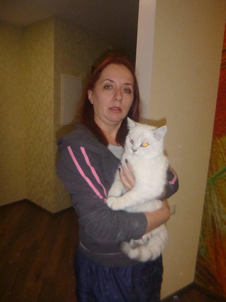 В Киеве из вентшахты спасли домашнего кота (ФОТО), фото-1