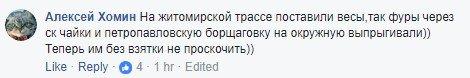 На въезде в Киев установили весы: реакция соцсетей, фото-2
