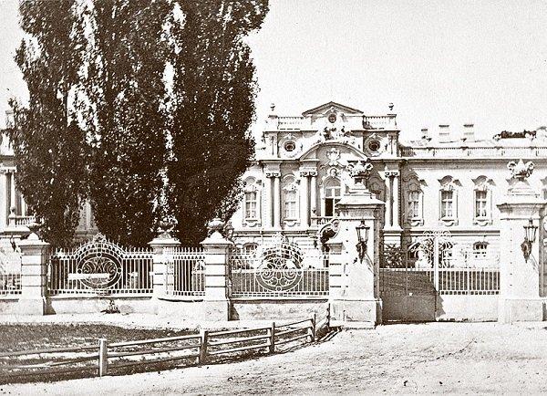 День в истории: в Киеве построили Мариинский дворец и нашли кокаиновый куст, фото-1