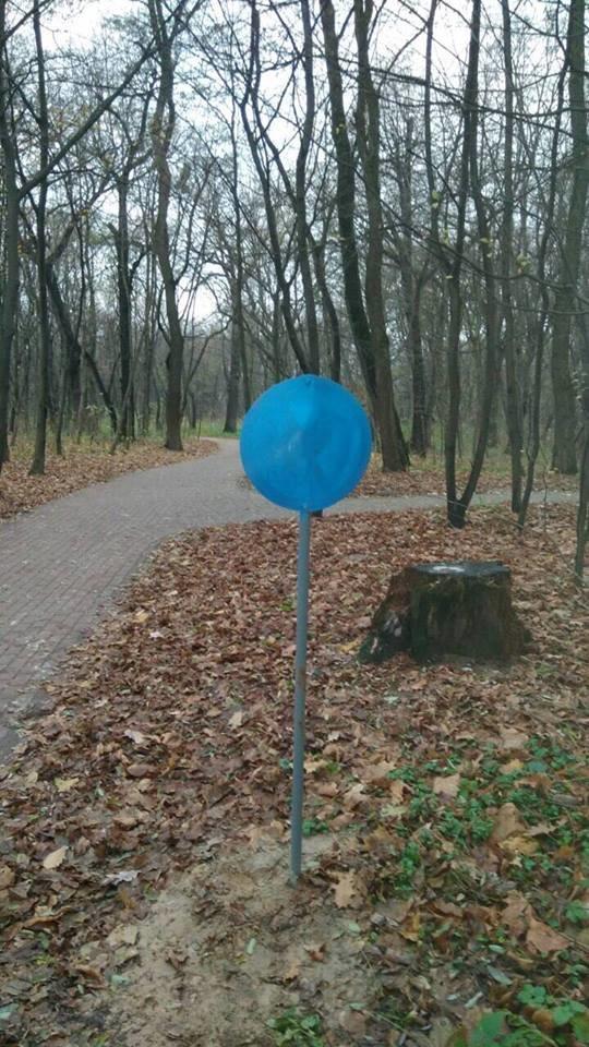 В Киеве украли растения из сквера (ФОТО), фото-1