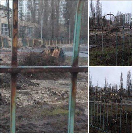 Цена стадиона: в Киеве спилили старый клен, фото-2
