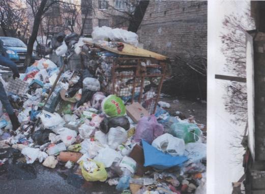 На радость крысам: возле жилого дома в Киеве образовалась огромная гора мусора (ФОТО), фото-3
