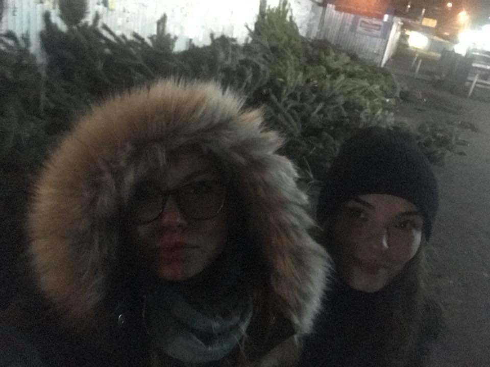 Киевские волонтеры отвезли на корм животным 60 тонн брошенных новогодних елок , фото-2