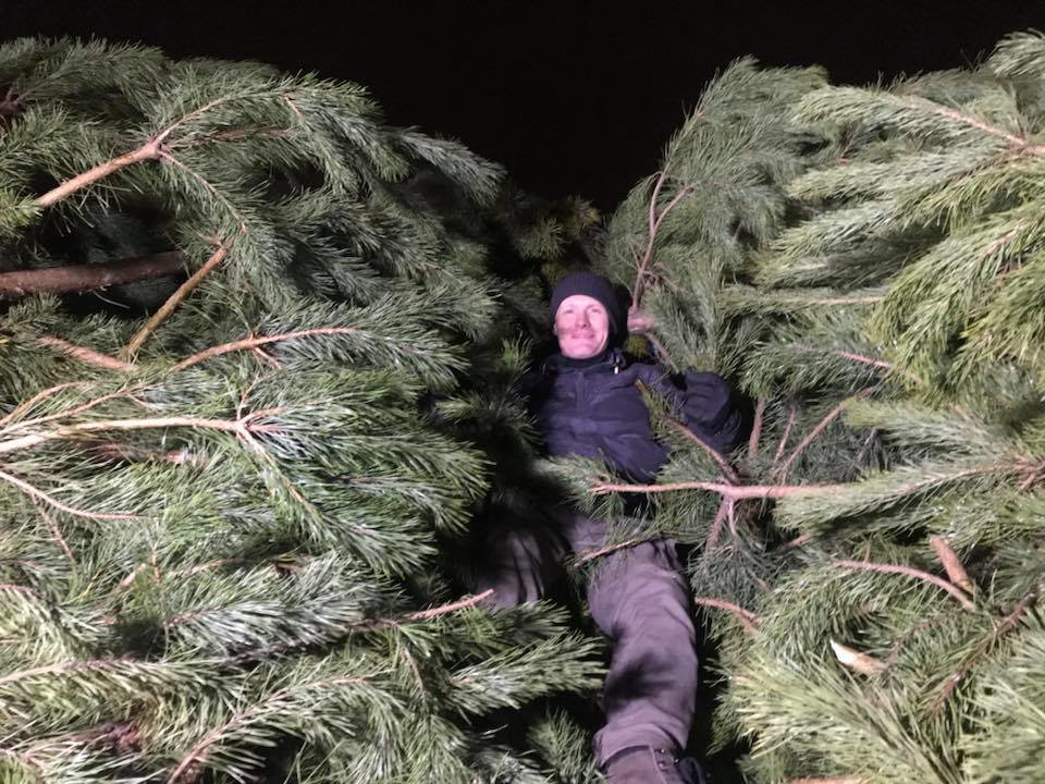 Киевские волонтеры отвезли на корм животным 60 тонн брошенных новогодних елок , фото-3