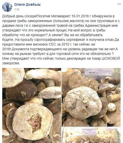В Киеве продают трухлые и грязные грибы (ФОТОФАКТ), фото-1